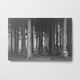 Wood Land Metal Print
