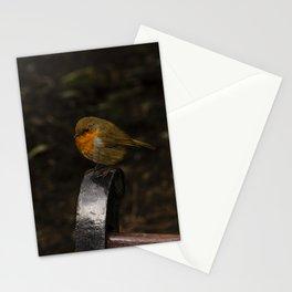 Resting Robin Stationery Cards