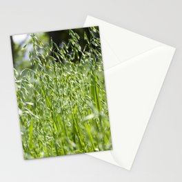 beautiful spikelets of oats Stationery Cards