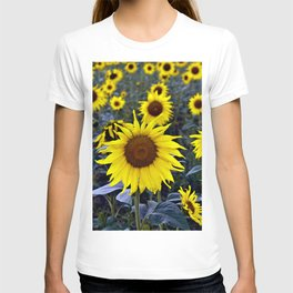 Sunflower Poetry T-shirt