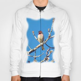 Red Finch - New Site - Jeronimo Rubio Photography 2016 (All Over Print) Hoody