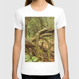 Dancing trees in the cloud forest  -  Tradewinds trail El Yunque rainforest PR T-shirt