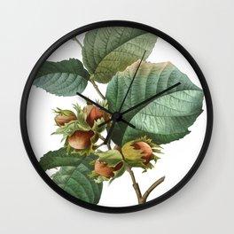 HIGHEST QUALITY botanical poster of Filbert Wall Clock