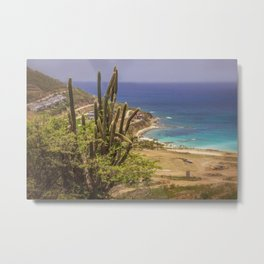 Island View with Cactus Metal Print