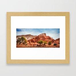 Kodachrome Park colorful desert beauty in spring. Framed Art Print