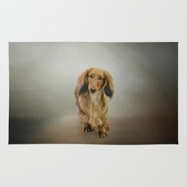 It's Showtime Baby - Dachshund Rug