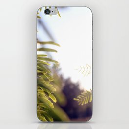 Leaves & Light iPhone Skin
