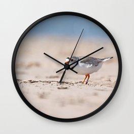 Great Lakes Piping Plover Wall Clock