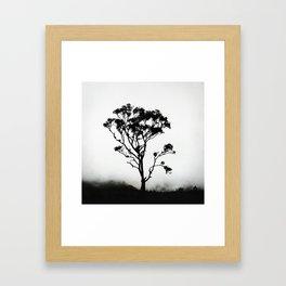 Tree of Solitude Framed Art Print