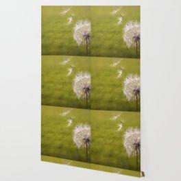 Wishing on a Dandelion Wallpaper