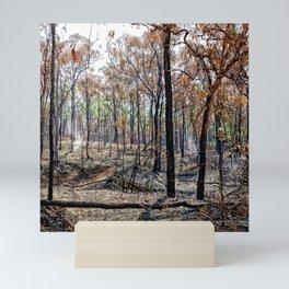 Fire damaged forest Mini Art Print