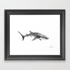Whale Shark Framed Art Print