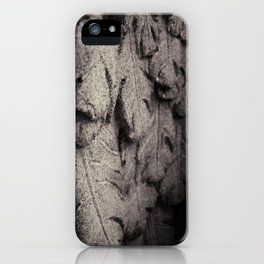 Feathers of Stone iPhone Case