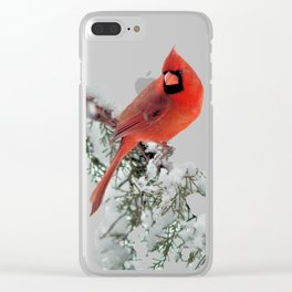 Cardinal on a Snowy Branch Clear iPhone Case