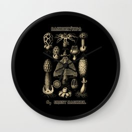 """""""Basidiomycopa"""" from """"Art Forms of Nature"""" by Ernst Haeckel Wall Clock"""