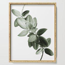 Yin Yang Ficus Glam #1 #tropical #decor #art #society6 Serving Tray