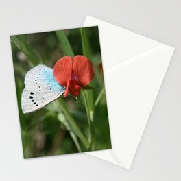 JUST A TENDERNESS Stationery Cards