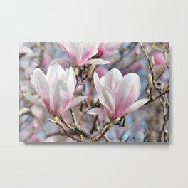 Magnolia 0128 Metal Print
