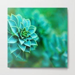 Green Succulent Mandala Metal Print