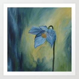 A Blue Poppy Art Print