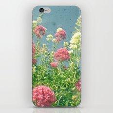 Raspberries and Cream iPhone & iPod Skin