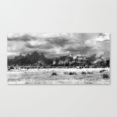 Horse and Grand Teton (Black and White) Canvas Print