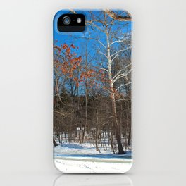 Classic Romance iPhone Case