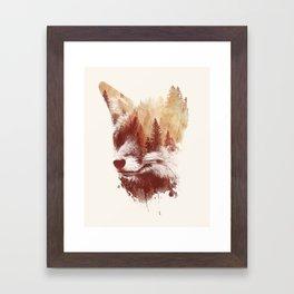 Blind fox Framed Art Print