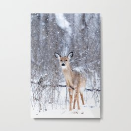 Bambi nature Metal Print