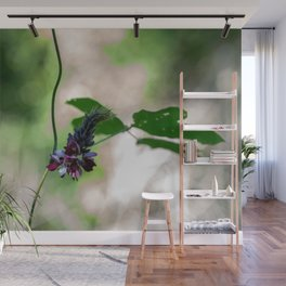 Flower Photography by Patrick Campanale Wall Mural