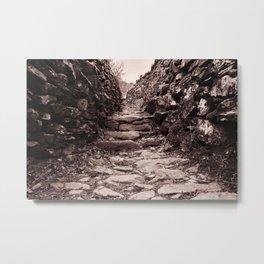 The path ahead Metal Print