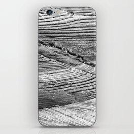 Petrified Dune iPhone Skin