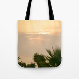 cloudy sky in the oasis Tote Bag