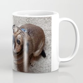 Puggy Miss you Coffee Mug