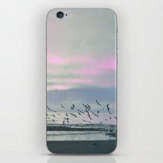 The Seagulls 3 iPhone & iPod Skin