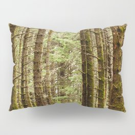 Old Growth Forest Photography Print Pillow Sham