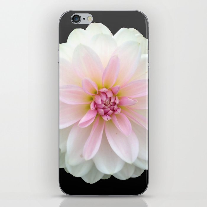 LONELY DAHLIA iPhone Skin