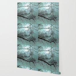 Blue Danube Wallpaper
