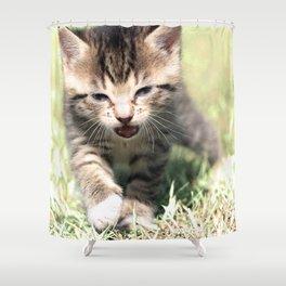Katze, Cat Shower Curtain
