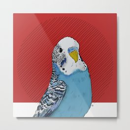 FEATHER FEST - BUDGIE Metal Print
