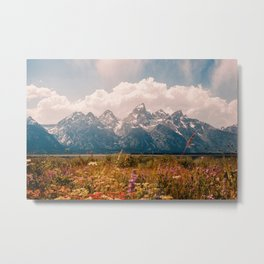 Grand Teton National Park Metal Print