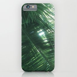 Looking Upward Through Lush Tropical Palm Leaves iPhone Case