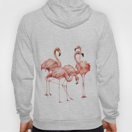 Pink flamingo. Watercolor Hoody