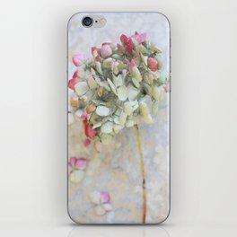 Pastel Pink Hydrangea iPhone Skin