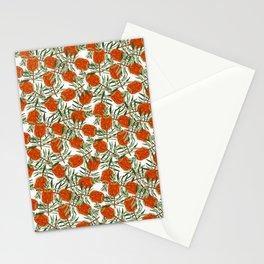 Bottlebrush Flower - White Stationery Cards