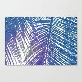 Coco Palm Leaf Zen Poster Canvas Print