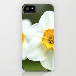 spring_2 iPhone Case
