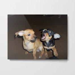 Puppy Palooza 2 Metal Print