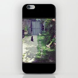 Chats Noirs, New Orleans kitties iPhone Skin