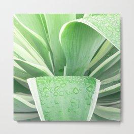 Green leaf photography Morning dew II Metal Print